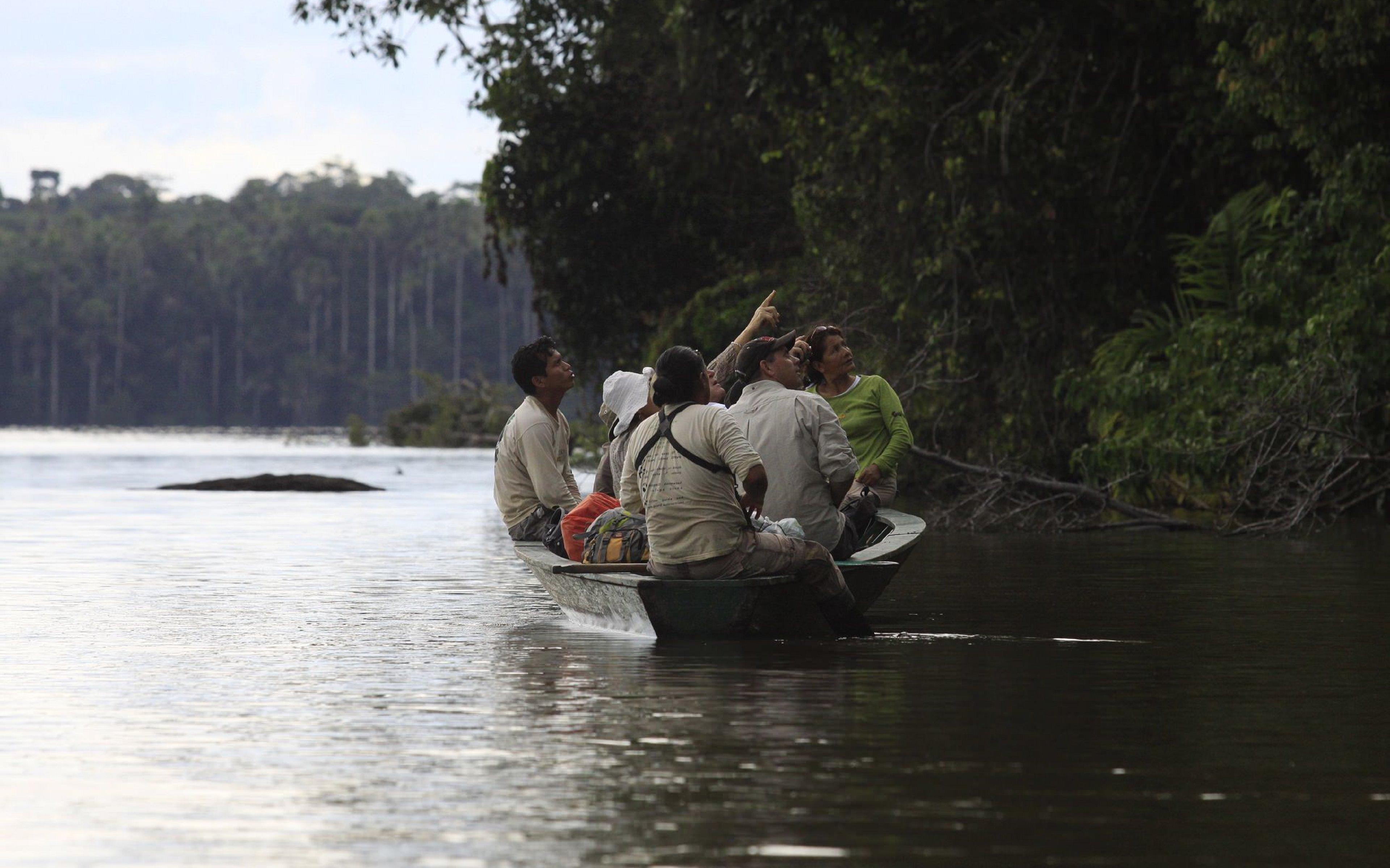 FEATURED TAMBOPATA - Tambopata National Reserve