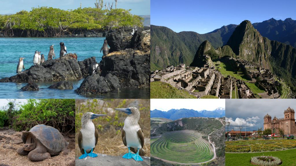 FEATURED THE LOST CITADEL OF THE INCAS AND THE NATURE LOVER'S PARADISE 1024x576 - LA CIUDAD PERDIDA DE LOS INCAS Y EL PARAÍSO PARA LOS NATURALISTAS: MACCHU PICCHU Y GALÁPAGOS